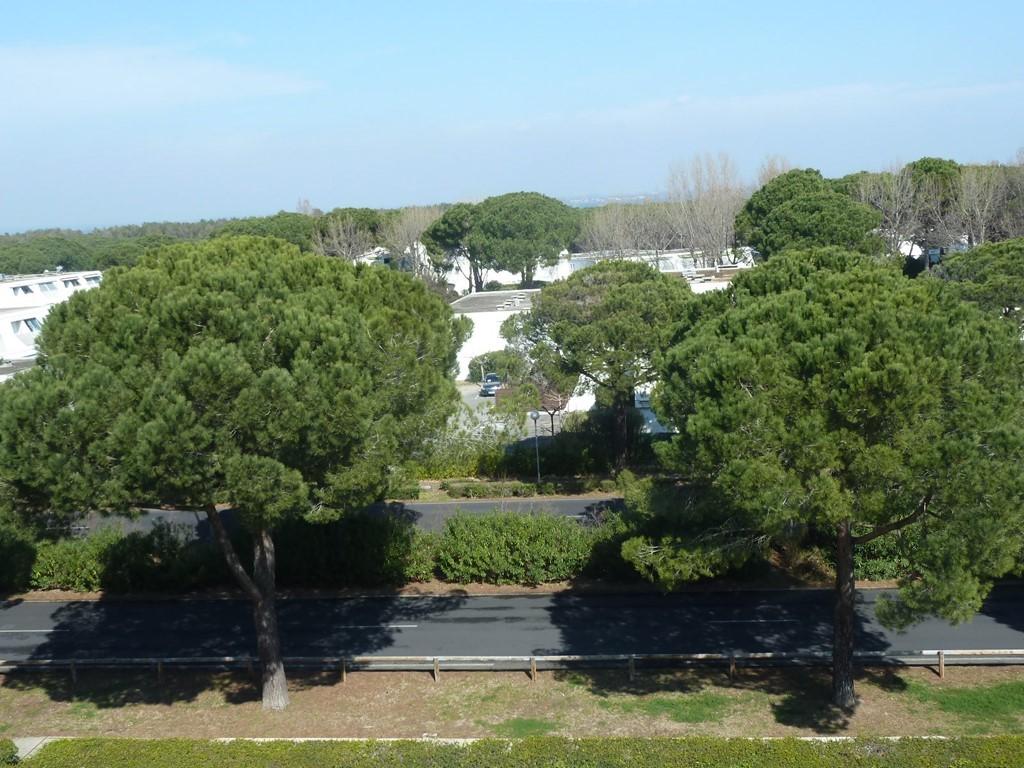 Jardin du couchant  (  )